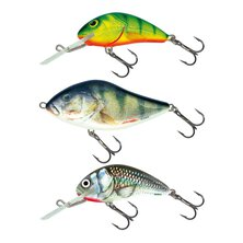 Salmo - Perch Pack